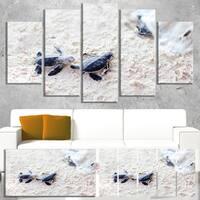 Designart 'Baby Green Turtles on Sand' Oversized Animal Wall Art