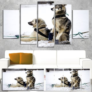Designart 'Large Sled Dogs Relaxing' Oversized Animal Wall Art