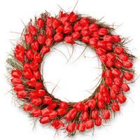 National Tree Company Red Plastic 32-inch Tulip Wreath