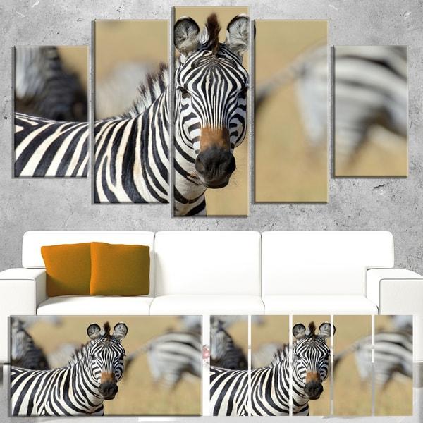 Designart 'African Zebra Close-Up View' African Wall Art Canvas Print