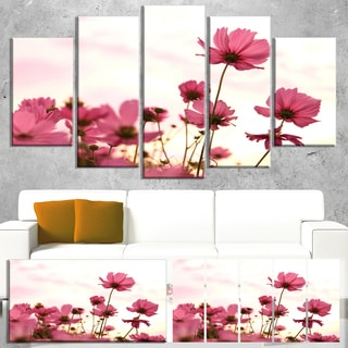 Designart 'Cosmos Flowers Meadow At Sunset' Modern Floral Artwork on Canvas