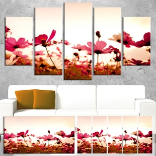 Designart 'Cosmos Flowers on Pink Background' Modern Floral Artwork on Canvas