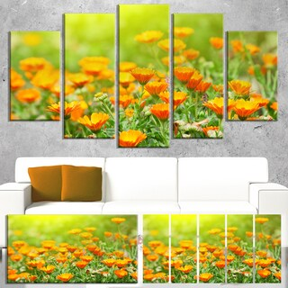 Designart 'Yellow Marigold Flowers' Extra Large Floral Canvas Art