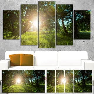 Designart 'Sunny Day in Green Forest Meadow' Oversized Landscape Canvas Art