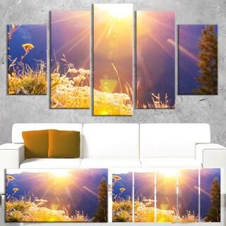 Designart 'Rural Meadow Flowers At Sunset' Landscape Art Print Canvas