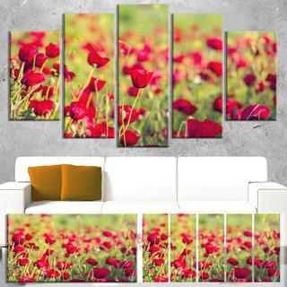 Designart 'Beautiful Poppy Flowers Background' Large Flower Wall Artwork