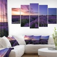 Beautiful Lavender Flowers At Sunset' Large Floral Canvas Art Print - Purple