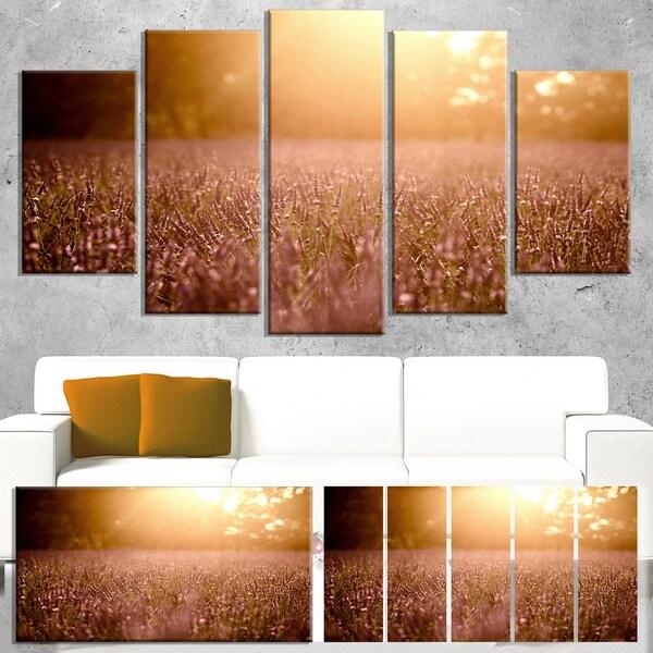 Designart 'Brown Tinged Lavender Field Sunset' Large Floral Canvas Art Print - Brown