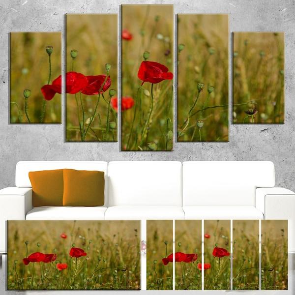 Designart \'Red Poppy Flower Field Background\' Large Flower Canvas ...