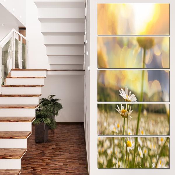 Designart 'Blooming Chamomiles Flowers' Oversized Landscape Canvas Art - YELLOW