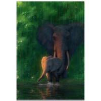 Ben Judd 'Carefree Calf' Elephant Wall Art on Metal or Acrylic