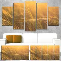 Designart 'Wheat Field Close-up at Sunset' Large Landscape Canvas Art - Orange