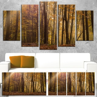 Designart 'Dense Forest in Rays of Rising Sun' Large Forest Canvas Art