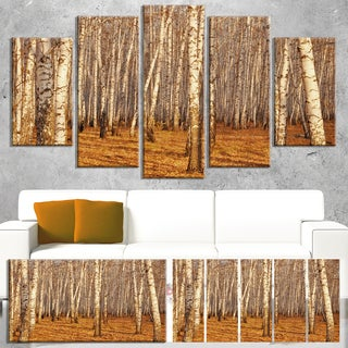 Designart 'Dense Birch Forest in the Fall' Large Forest Canvas Art