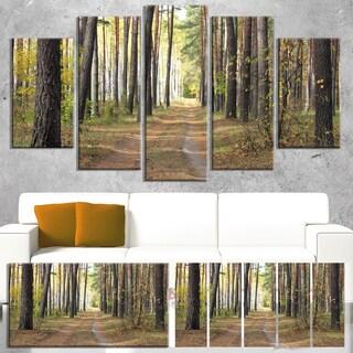 Designart 'Pathway in Autumn Pine Forest' Modern Forest Canvas Art