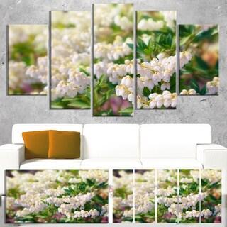 Designart 'Beautiful Blooming White Flowers' Modern Floral Wall Artwork