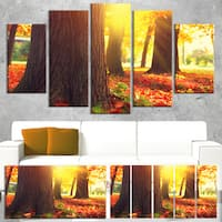 Designart 'Autumn Trees in the Sunlight' Landscape Wall Art Print Canvas