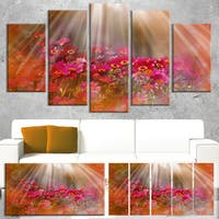 Designart 'Sunlight Over Small Red Flowers' Large Floral Canvas Artwork