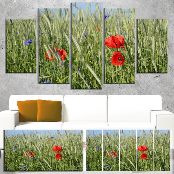 Designart 'Rural Landscape with Red Poppies' Landscape Wall Art Print Canvas