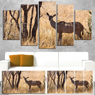 Designart 'Grants Gazelle Standing in Long Grass' Modern Animal Canvas Wall Artwork