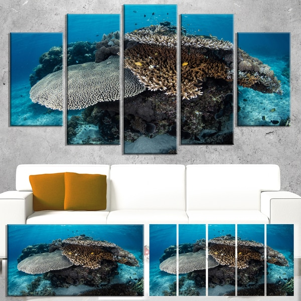Designart 'Corals and Fish in Komodo National Park' Modern Seashore Canvas Wall Art Print