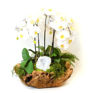 White Orchids, Green Moss, and White Geode Silk Plant in Brown Wood Bowl
