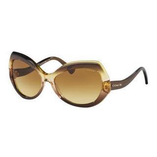 Coach Women HC8177 L1588 54002L Brown Plastic Irregular Sunglasses