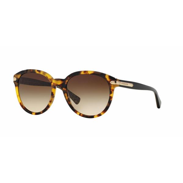 66b19ff6be Coach Women HC8140 L111 530913 Havana Plastic Phantos Sunglasses