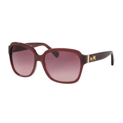 Coach Women HC8185 L1602 5396G2 Purple/Reddish Plastic Square Sunglasses