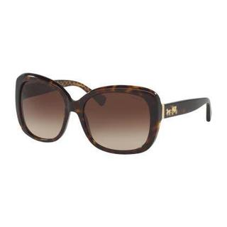 Coach Women HC8158F L559 539413 Havana Plastic Square Sunglasses