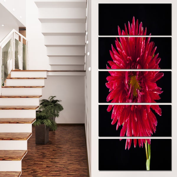 Designart 'Chrysanthemum Flower on Black' Flowers Canvas Wall Artwork
