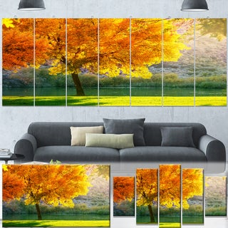 Designart 'Beautiful Autumn Season in Forest' Extra Extra Large Landscape Canvas Art