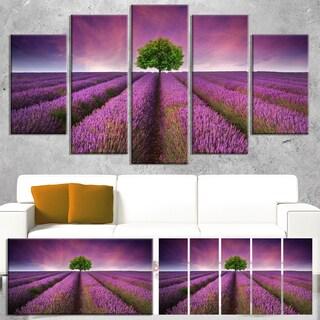 Designart 'Lavender Field Sunset with Single Tree' Large Floral Canvas Art Print