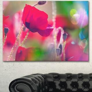 Designart 'Close-Up View of Red Poppy Flowers' Modern Flower Canvas Art Print