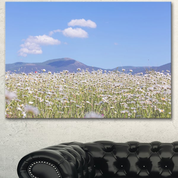 Designart 'Chamomiles with Hills on Background' Large Flower Wall Artwork - Blue