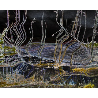 Stewart Parr 'Yellowstone National Park' Unframed Photo Print