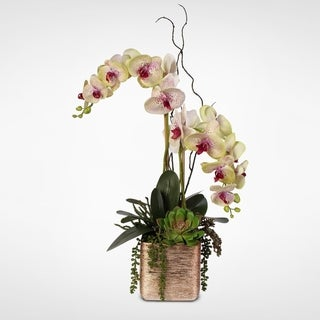 Red Silk Orchids and Succulents Arrangement in Gold-tone Ceramic Pot
