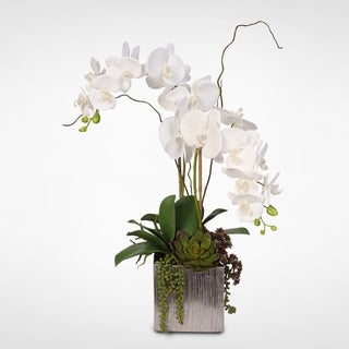 Real Touch White Silk Orchids and Succulents Arrangement in Silver Ceramic Pot