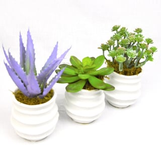 Purple/Green Succulents Faux Plants in White Containers