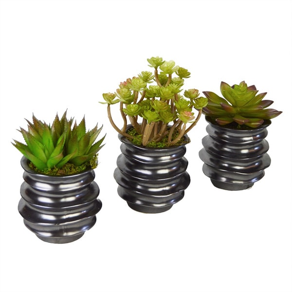 Faux Succulent Trio in Gunmetal Containers