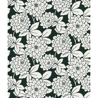 Brewster Souci Black Fun Floral Wallpaper