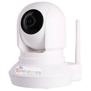 PetCam Interactive 2-Way Audio & Wireless Indoor Pet Camera & Monitor|https://ak1.ostkcdn.com/images/products/13372554/P20071958.jpg?impolicy=medium