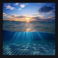 """Underwater 3"" Framed Plexiglass Wall Art"