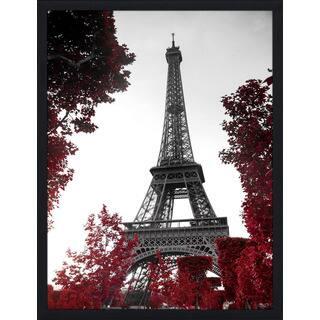 """Eiffel Tower"" Framed Plexiglass Wall Art"