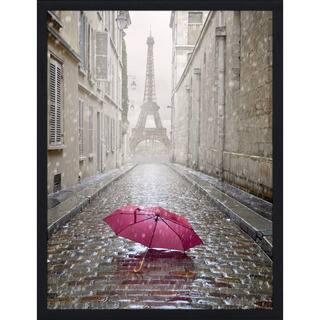 """Umbrella in Paris"" Framed Plexiglass Wall Art"