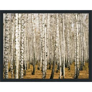 """Birch Trees 3"" Framed Plexiglass Wall Art"