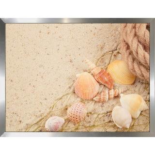 """Sandy Shells 1"" Framed Plexiglass Wall Art"