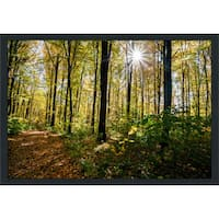 """Forest Trees"" Framed Plexiglass Wall Art"
