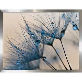 """Flower Water Droplets 2"" Framed Plexiglass Wall Art"