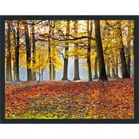 """Forest Path"" Framed Plexiglass Wall Art"